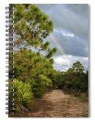Rainbow Path Spiral Notebook