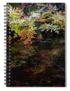 Rainbow Pickle Creek Reflections 6272 H_3 Spiral Notebook