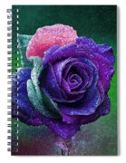 Rainbow Rose Among The Stars Spiral Notebook