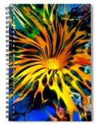 Rainbow Thunder Well Spiral Notebook
