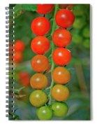 Rainbows Of Love Spiral Notebook