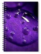 Raindrop, Prn Spiral Notebook