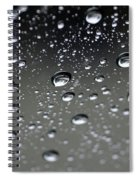 Raindrops  1 Spiral Notebook