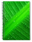 Raindrops ... Spiral Notebook
