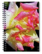 Raindrops On A Rose Spiral Notebook