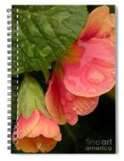 Raindrops On Coral Flowers Spiral Notebook
