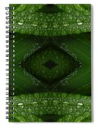 Raindrops On Green Leaves Collage Spiral Notebook