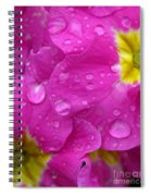 Raindrops On Pink Flowers Spiral Notebook
