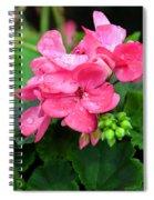 Raindrops On Pink Geranium Spiral Notebook
