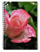 Raindrops On Pink Rose Spiral Notebook