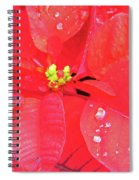 Raindrops On Red Spiral Notebook