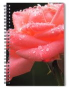 Raindrops On Roses... Spiral Notebook
