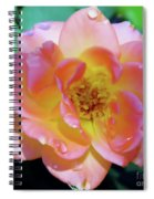 Raindrops On The Pink Rose Spiral Notebook