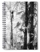 Rainforest Abstract Spiral Notebook