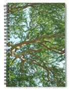 Rainforest Canopy Spiral Notebook