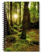 Rainforest Path Spiral Notebook
