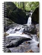 Rainforest Stream Spiral Notebook