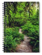 Rainforest Trail Spiral Notebook