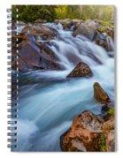 Rainier Runoff Spiral Notebook