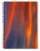 Raining Down Spiral Notebook