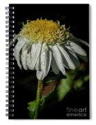 Rainy Daisy Spiral Notebook