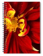 Rainy Day Dahlia Spiral Notebook