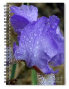 Rainy Day Iris Spiral Notebook