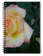Rainy Day Rose Spiral Notebook
