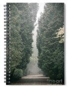 Rainy Gloomy Alley In Park Spiral Notebook