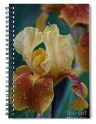 Rainy Iris Spiral Notebook