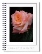 Rainy Rose In Macro Poster Spiral Notebook