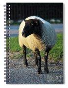 Ram Raider Spiral Notebook