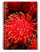 Rambutan Spiral Notebook