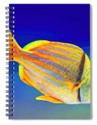 Ramone Spiral Notebook