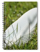 Random Feather Spiral Notebook