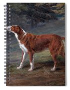 Ranger A Setter The Property Of Elizabeth Gray Spiral Notebook