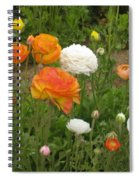 Ranunculus 5 Spiral Notebook