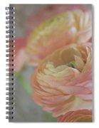 Ranunculus - 6219 Spiral Notebook