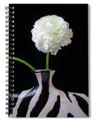 Ranunculus In Black And Whie Vase Spiral Notebook
