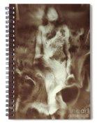 Raoul Ubac: The Nebula Spiral Notebook