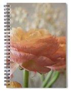Ranunculus - 6315 Spiral Notebook