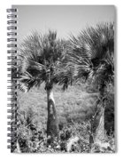 Rare Palm Trees Curacao Spiral Notebook
