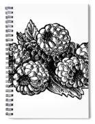 Raspberries Image Spiral Notebook