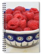 Raspberries In Polish Pottery Bowl  Spiral Notebook