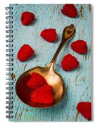Raspberries With Antique Spoon Spiral Notebook