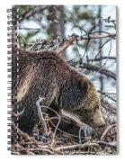 Raspberry 2013 Spiral Notebook