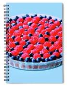 Raspberry And Blueberry Tart Spiral Notebook