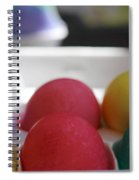 Raspberry And Hawaiian Surf Colored Easter Eggs Spiral Notebook