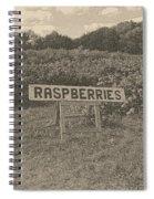 Raspberry Fields  Spiral Notebook