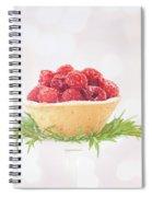 Raspberry Holidays Spiral Notebook